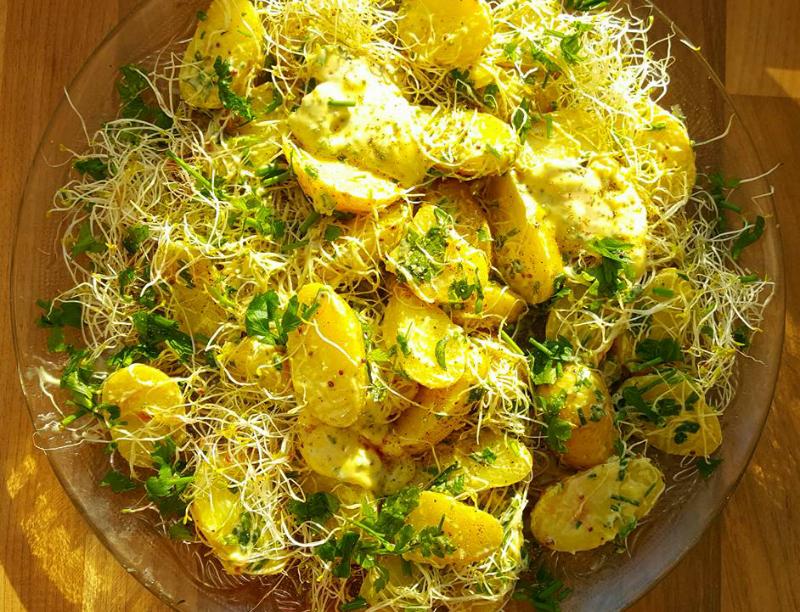 Aardappelsalade met knoflookmayonaise en alfalfa